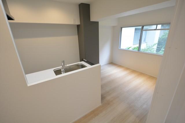 パイロットハウス北新宿 DK+洋室1