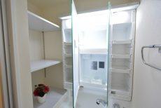 駒場ネオパレス 洗面室