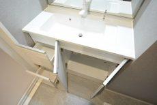 シャトレ市ヶ谷 洗面室