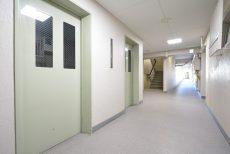 駒場ネオパレス 玄関