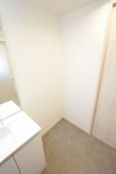 日生野沢マンション 洗面室