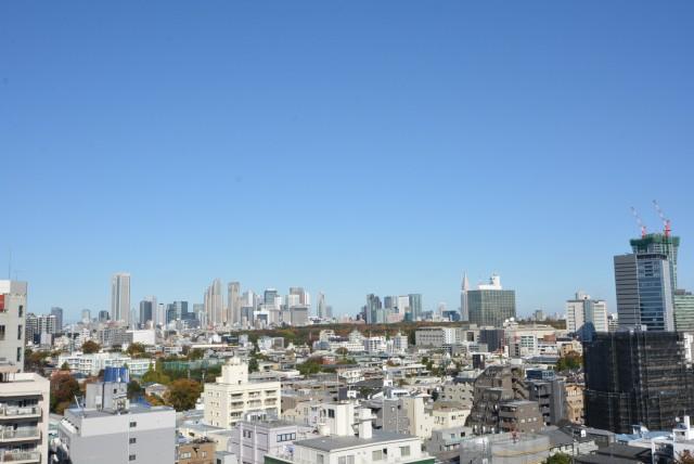 クレッセント渋谷神泉 洋室2