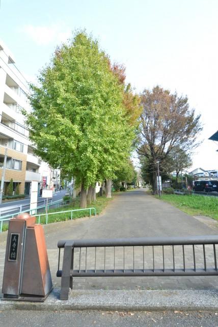 フィールT幡ヶ谷 周辺