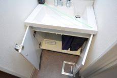 上馬ハイホーム 洗面室