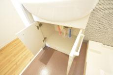 藤和三軒茶屋コープ 洗面室