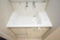 秀和第一南平台レジデンス 洗面室