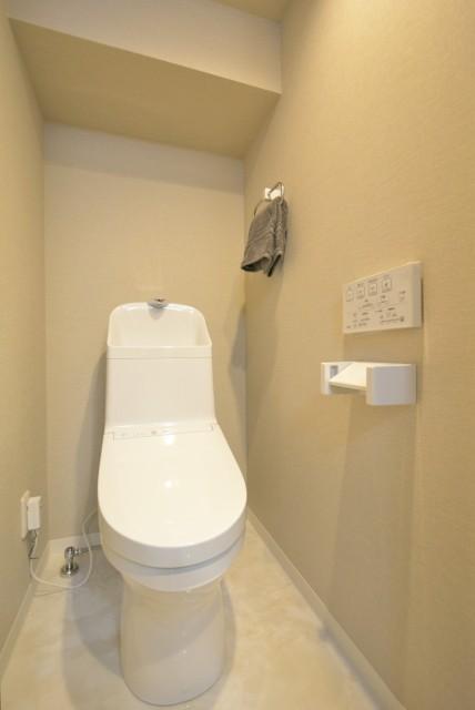 東池袋ハイツ壱番館 トイレ