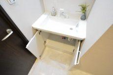 東池袋ハイツ壱番館 洗面室
