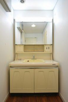 グランドメゾン池袋 洗面室
