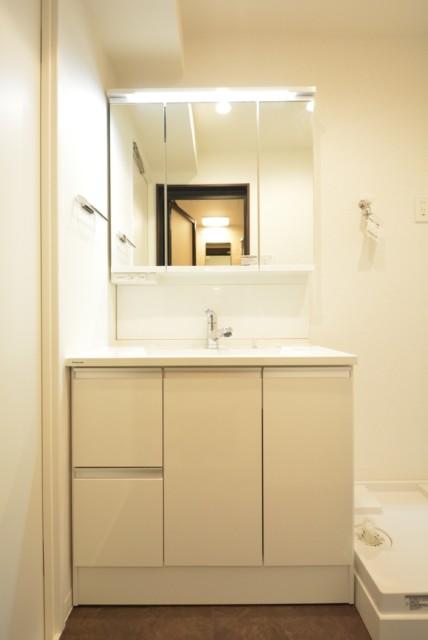 ライオンズマンション護国寺 洗面室