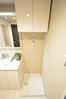 西蒲田スカイハイツ 洗面室