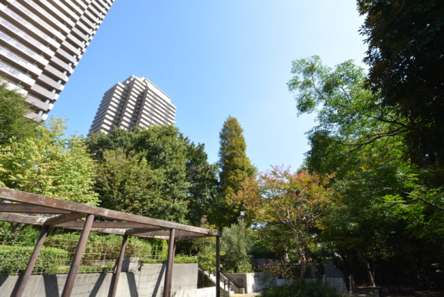 恵比須周辺