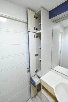 リシェ大井 洗面室