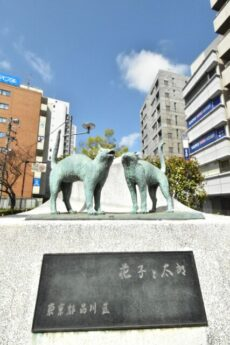 リシェ大井 大井駅周辺