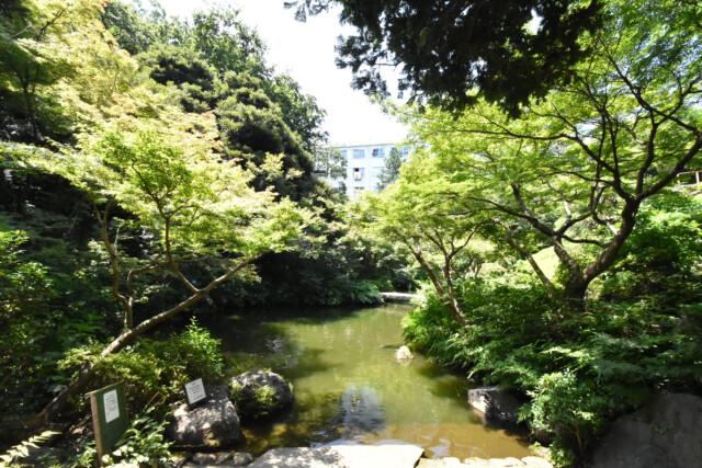 五反田周辺 池田山公園