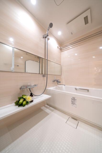 グランドメゾン麻布一の橋 浴室