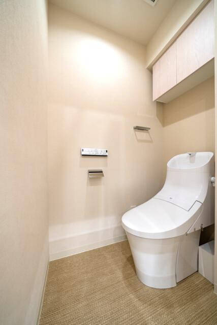 グランドメゾン麻布一の橋 トイレ