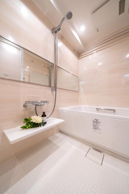 蔵前アムフラットⅡ 浴室