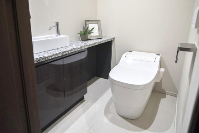 パークナード南麻布 トイレ
