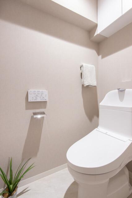 ゾンネンハイム牛込 トイレ