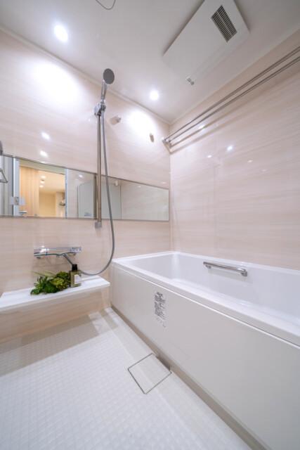 クリオ両国壱番館 浴室