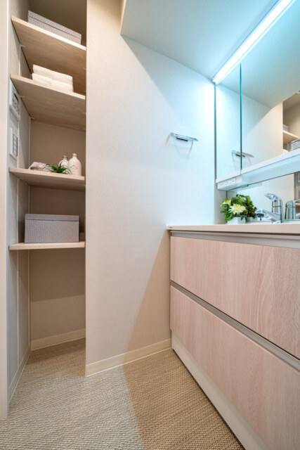 ルモンド南麻布 洗面室