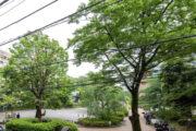 スカイコート日本橋浜町公園 眺望